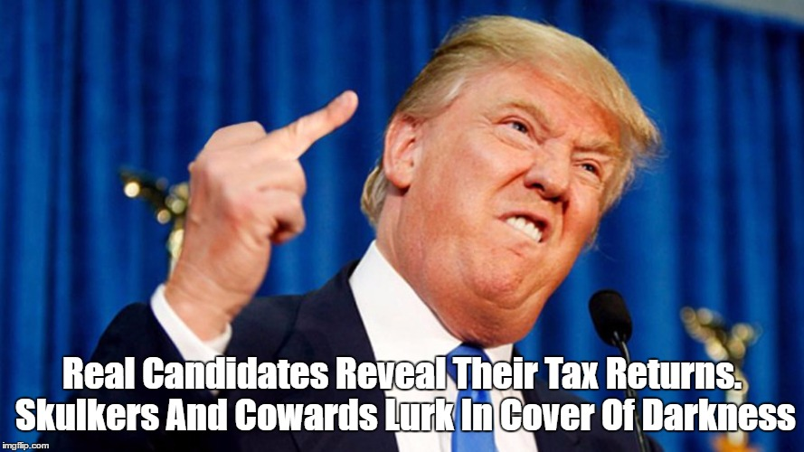 Real Candidates Reveal Their Tax Returns. Skulkers And Cowards Lurk In Cover Of Darkness | made w/ Imgflip meme maker