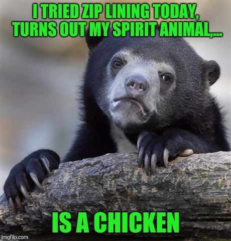 Confession Bear Meme | I TRIED ZIP LINING TODAY, TURNS OUT MY SPIRIT ANIMAL,... IS A CHICKEN | image tagged in memes,confession bear | made w/ Imgflip meme maker