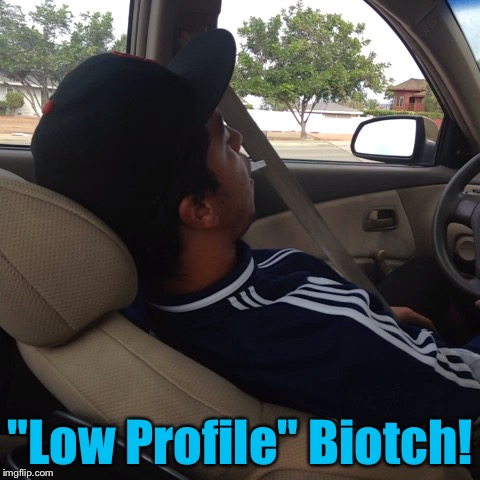 """Low Profile"" Biotch! 