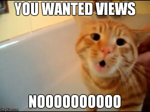 YOU WANTED VIEWS NOOOOOOOOOO | made w/ Imgflip meme maker