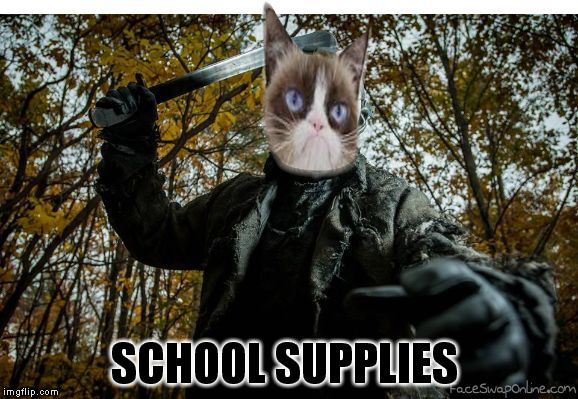 grumpy cat jason | SCHOOL SUPPLIES | image tagged in grumpy cat jason | made w/ Imgflip meme maker