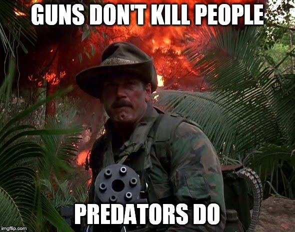 Guns don't kill people... |  GUNS DON'T KILL PEOPLE; PREDATORS DO | image tagged in jesse ventura predator,predator,bfg | made w/ Imgflip meme maker