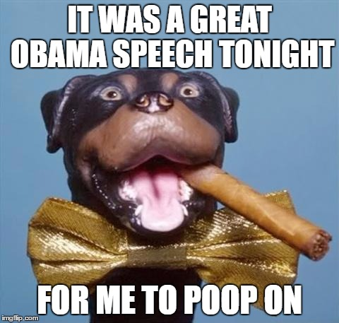 Triumph the Insult Comic Dog | IT WAS A GREAT OBAMA SPEECH TONIGHT FOR ME TO POOP ON | image tagged in triumph the insult comic dog | made w/ Imgflip meme maker