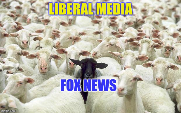 black sheep | LIBERAL MEDIA FOX NEWS | image tagged in black sheep | made w/ Imgflip meme maker