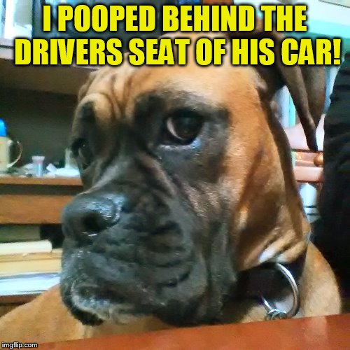 I POOPED BEHIND THE DRIVERS SEAT OF HIS CAR! | made w/ Imgflip meme maker