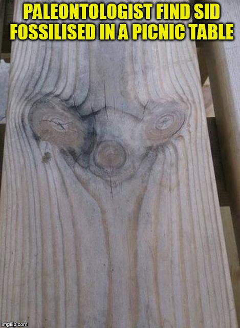 Huge discovery  from the ice age world! | PALEONTOLOGIST FIND SID FOSSILISED IN A PICNIC TABLE | image tagged in sid the sloth,ice age,funny meme,dinosaurs,movies,table | made w/ Imgflip meme maker