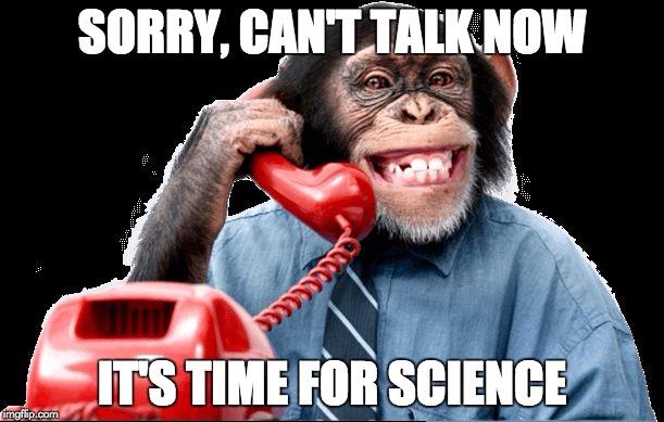 Αποτέλεσμα εικόνας για monkey on the phone