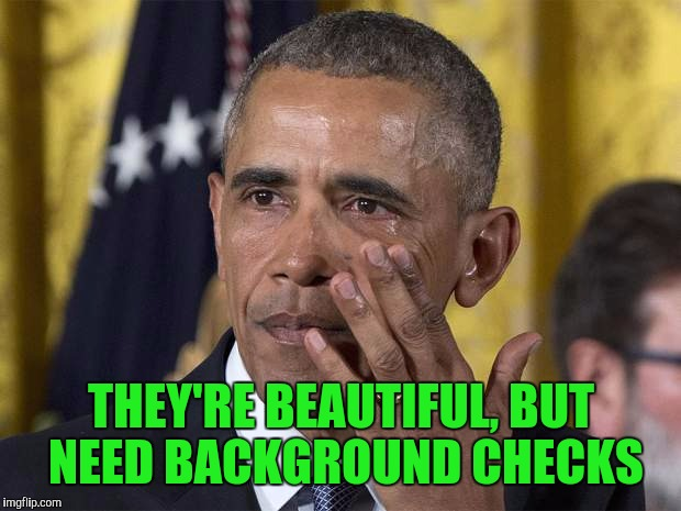 THEY'RE BEAUTIFUL, BUT NEED BACKGROUND CHECKS | made w/ Imgflip meme maker