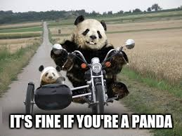 IT'S FINE IF YOU'RE A PANDA | made w/ Imgflip meme maker