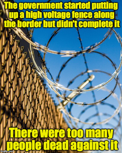 Electric border fence |  The government started putting up a high voltage fence along the border but didn't complete it; There were too many people dead against it | image tagged in border,wall | made w/ Imgflip meme maker