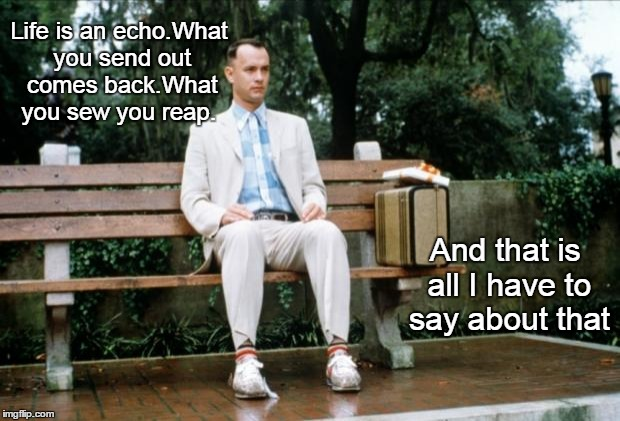 Forrest Gump | Life is an echo.What you send out comes back.What you sew you reap. And that is all I have to say about that | image tagged in forrest gump | made w/ Imgflip meme maker