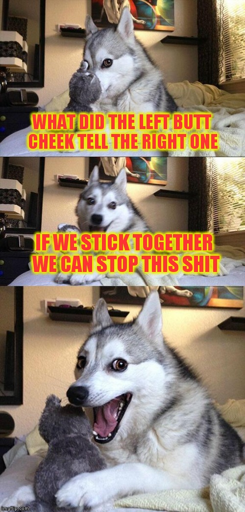 Bad Pun Dog Meme | WHAT DID THE LEFT BUTT CHEEK TELL THE RIGHT ONE IF WE STICK TOGETHER WE CAN STOP THIS SHIT | image tagged in memes,bad pun dog | made w/ Imgflip meme maker