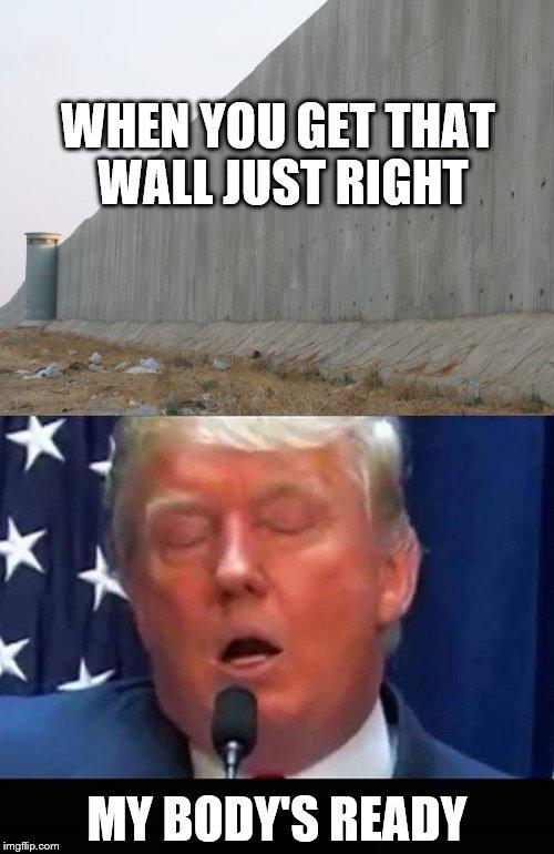 Funny Donald Trump Wall Memes : Trumps wall imgflip
