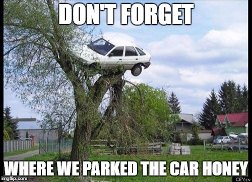 Secure Parking Meme |  DON'T FORGET; WHERE WE PARKED THE CAR HONEY | image tagged in memes,secure parking | made w/ Imgflip meme maker