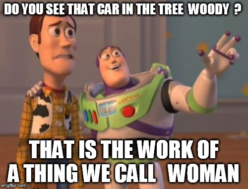 X, X Everywhere Meme | DO YOU SEE THAT CAR IN THE TREE  WOODY  ? THAT IS THE WORK OF A THING WE CALL   WOMAN | image tagged in memes,x x everywhere | made w/ Imgflip meme maker