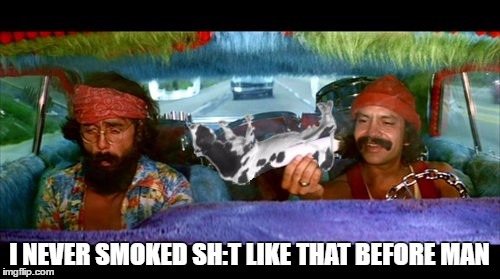 wooooh | I NEVER SMOKED SH:T LIKE THAT BEFORE MAN | image tagged in memes,cheech and chong,420,evil cows | made w/ Imgflip meme maker