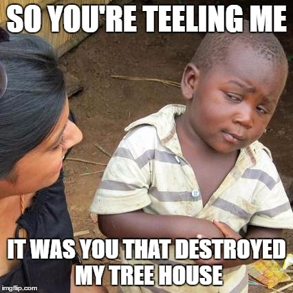 Third World Skeptical Kid Meme | SO YOU'RE TEELING ME IT WAS YOU THAT DESTROYED MY TREE HOUSE | image tagged in memes,third world skeptical kid | made w/ Imgflip meme maker