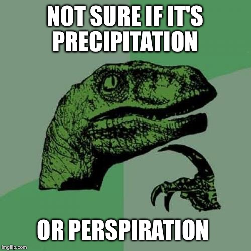 It's finally raining and it's still hot as hell.  | NOT SURE IF IT'S PRECIPITATION OR PERSPIRATION | image tagged in memes,philosoraptor | made w/ Imgflip meme maker