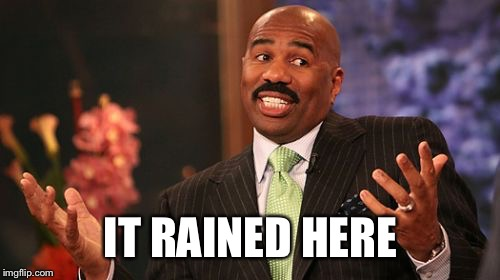 Steve Harvey Meme | IT RAINED HERE | image tagged in memes,steve harvey | made w/ Imgflip meme maker
