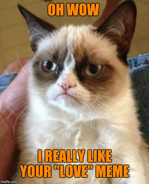"Grumpy Cat Meme | OH WOW I REALLY LIKE YOUR ""LOVE"" MEME 