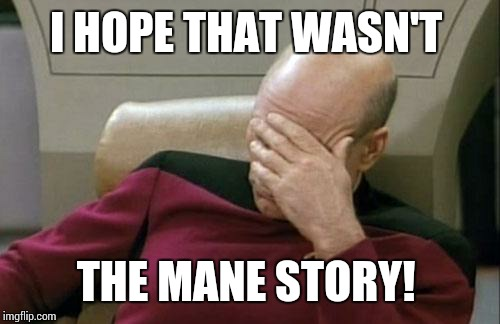 Captain Picard Facepalm Meme | I HOPE THAT WASN'T THE MANE STORY! | image tagged in memes,captain picard facepalm | made w/ Imgflip meme maker