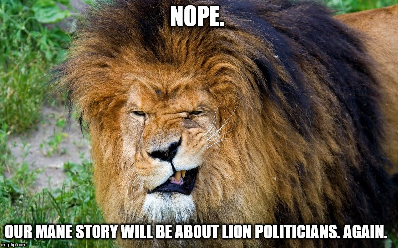 NOPE. OUR MANE STORY WILL BE ABOUT LION POLITICIANS. AGAIN. | made w/ Imgflip meme maker