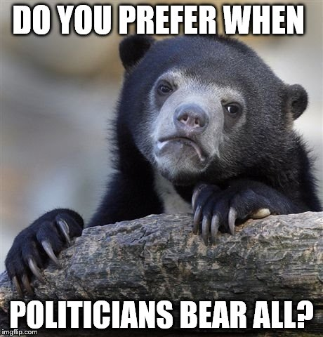 Confession Bear Meme | DO YOU PREFER WHEN POLITICIANS BEAR ALL? | image tagged in memes,confession bear | made w/ Imgflip meme maker