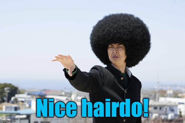 Fugly Lady Fro | Nice hairdo! | image tagged in fugly lady fro | made w/ Imgflip meme maker