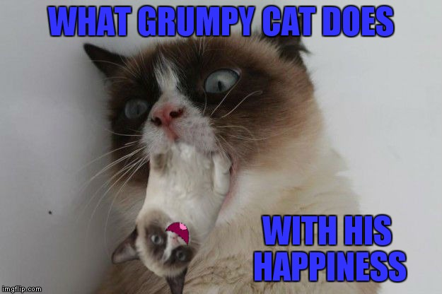 WHAT GRUMPY CAT DOES WITH HIS HAPPINESS | made w/ Imgflip meme maker