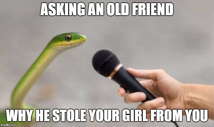 frend is snek | ASKING AN OLD FRIEND WHY HE STOLE YOUR GIRL FROM YOU | image tagged in friends,girlfriend,ex girlfriend,unfriend | made w/ Imgflip meme maker