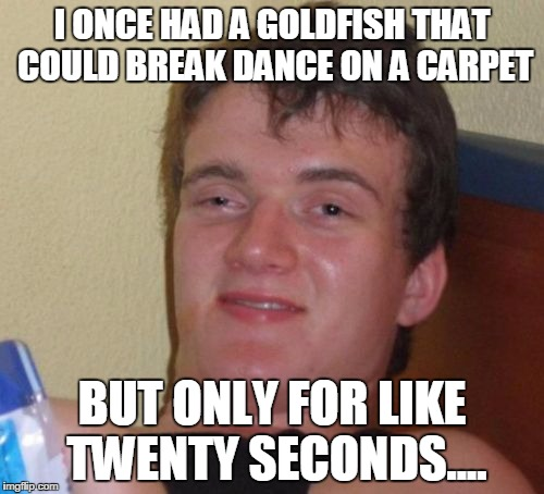 10 Guy Meme | I ONCE HAD A GOLDFISH THAT COULD BREAK DANCE ON A CARPET BUT ONLY FOR LIKE TWENTY SECONDS.... | image tagged in memes,10 guy | made w/ Imgflip meme maker