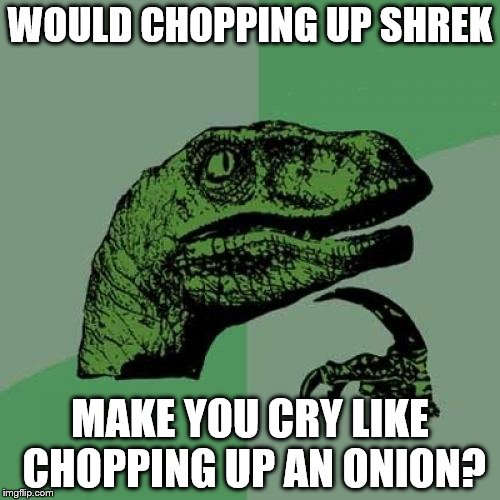 They both have layers after all... | WOULD CHOPPING UP SHREK MAKE YOU CRY LIKE CHOPPING UP AN ONION? | image tagged in memes,philosoraptor,shrek,onions,movies,films | made w/ Imgflip meme maker