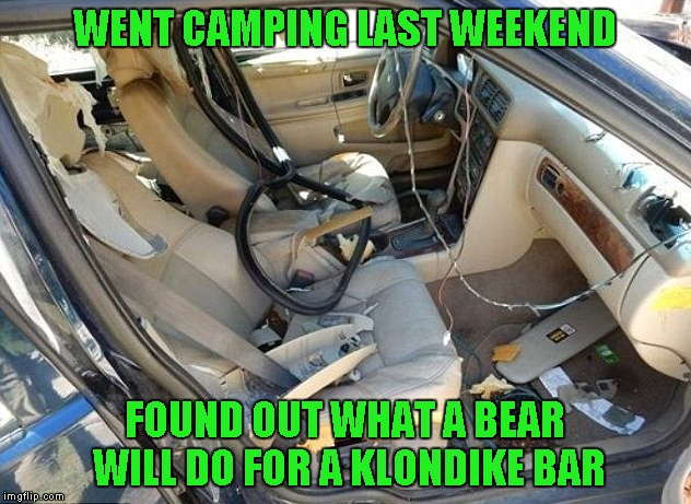 Note to self: If a bear is after you, don't hide in the car. | WENT CAMPING LAST WEEKEND FOUND OUT WHAT A BEAR WILL DO FOR A KLONDIKE BAR | image tagged in car destroyed,memes,funny,what would you do for a klondike bar,bears | made w/ Imgflip meme maker