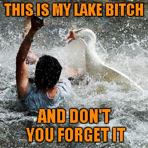THIS IS MY LAKE B**CH AND DON'T YOU FORGET IT | made w/ Imgflip meme maker