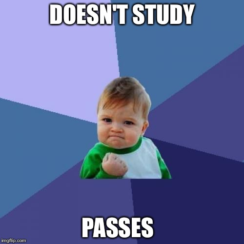 Success Kid Meme |  DOESN'T STUDY; PASSES | image tagged in memes,success kid | made w/ Imgflip meme maker