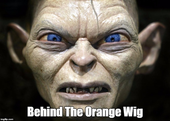 Behind The Orange Wig | made w/ Imgflip meme maker