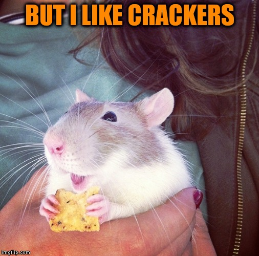 BUT I LIKE CRACKERS | made w/ Imgflip meme maker