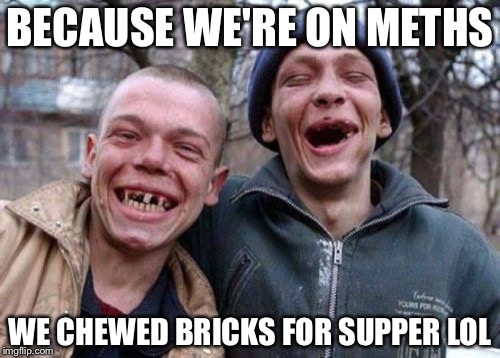 Ugly Twins Meme | BECAUSE WE'RE ON METHS WE CHEWED BRICKS FOR SUPPER LOL | image tagged in memes,ugly twins | made w/ Imgflip meme maker