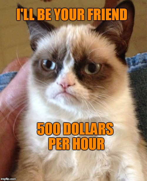 Grumpy Cat Meme | I'LL BE YOUR FRIEND 500 DOLLARS PER HOUR | image tagged in memes,grumpy cat | made w/ Imgflip meme maker