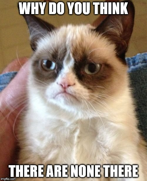 Grumpy Cat Meme | WHY DO YOU THINK THERE ARE NONE THERE | image tagged in memes,grumpy cat | made w/ Imgflip meme maker
