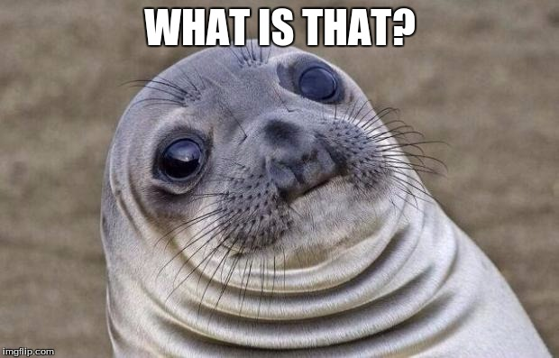 Awkward Moment Sealion Meme | WHAT IS THAT? | image tagged in memes,awkward moment sealion | made w/ Imgflip meme maker