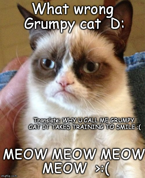 Grumpy Cat | What wrong Grumpy cat  D: MEOW MEOW MEOW MEOW  >:( Translate: WHY U CALL ME GRUMPY CAT IT TAKES TRAINING TO SMILE :( | image tagged in memes,grumpy cat | made w/ Imgflip meme maker