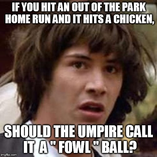 "Conspiracy Keanu Meme | IF YOU HIT AN OUT OF THE PARK HOME RUN AND IT HITS A CHICKEN, SHOULD THE UMPIRE CALL IT  A "" FOWL "" BALL? 
