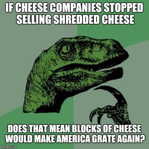 Philosoraptor Meme | IF CHEESE COMPANIES STOPPED SELLING SHREDDED CHEESE DOES THAT MEAN BLOCKS OF CHEESE WOULD MAKE AMERICA GRATE AGAIN? | image tagged in memes,philosoraptor | made w/ Imgflip meme maker