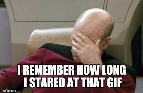 Captain Picard Facepalm Meme | I REMEMBER HOW LONG I STARED AT THAT GIF | image tagged in memes,captain picard facepalm | made w/ Imgflip meme maker