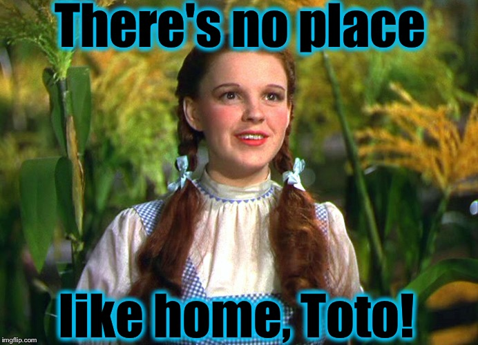 Dorothy | There's no place like home, Toto! | image tagged in dorothy | made w/ Imgflip meme maker