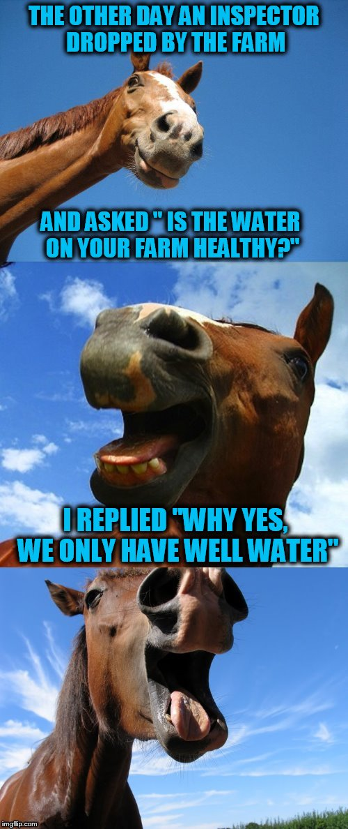 Just Horsing Around | THE OTHER DAY AN INSPECTOR DROPPED BY THE FARM AND ASKED '' IS THE WATER ON YOUR FARM HEALTHY?'' I REPLIED ''WHY YES, WE ONLY HAVE WELL WATE | image tagged in just horsing around,funny meme,jokes,horses,farm,water | made w/ Imgflip meme maker