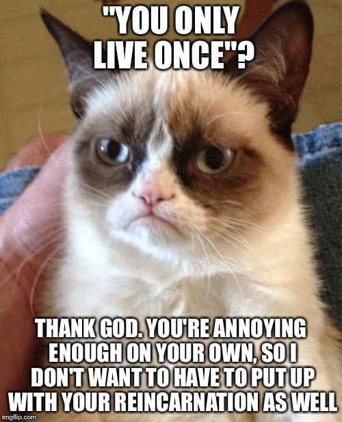 "The perfect response to people who constantly say ""YOLO"" 