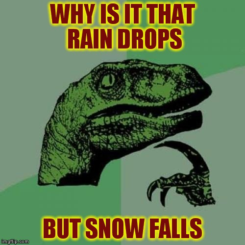 Philosoraptor Meme | WHY IS IT THAT RAIN DROPS BUT SNOW FALLS | image tagged in memes,philosoraptor | made w/ Imgflip meme maker