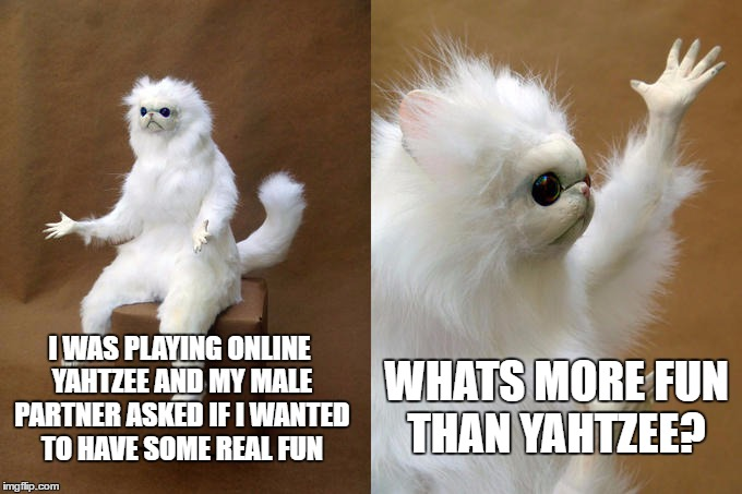 Persian Cat Room Guardian Meme | I WAS PLAYING ONLINE YAHTZEE AND MY MALE PARTNER ASKED IF I WANTED TO HAVE SOME REAL FUN WHATS MORE FUN THAN YAHTZEE? | image tagged in memes,persian cat room guardian | made w/ Imgflip meme maker